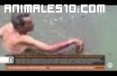 Un borracho es atacado por monos araña