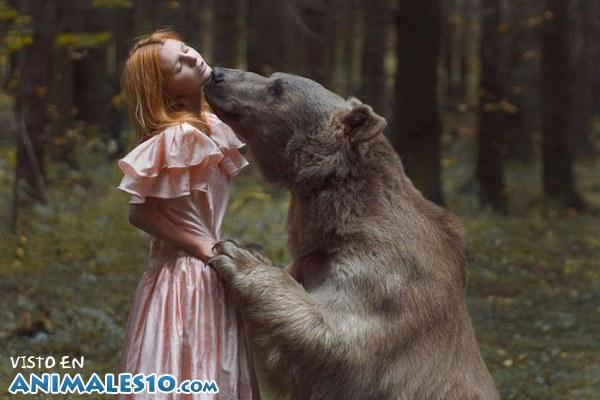 Oso ruso gigante y amoroso