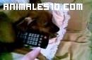 El dueño del mando a distancia