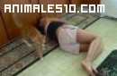 Gato odia el canto de su dueña