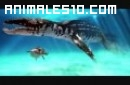 Mundo Jurásico - Megalodon P6